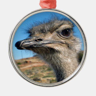 Harry the Happy Ostrich Silver-Colored Round Decoration