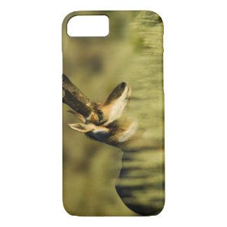 Hart Mountain National Antelope Refuge, Oregon, iPhone 8/7 Case