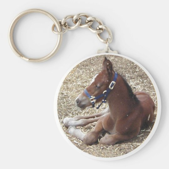 hartlandfoal basic round button key ring