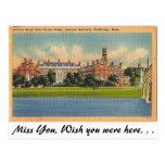 Harvard University, Cambridge, Massachusetts Postcard