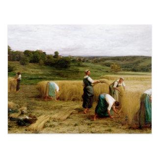 Harvest, 1874 postcard