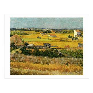 Harvest at La Crau, Vincent Van Gogh Postcard