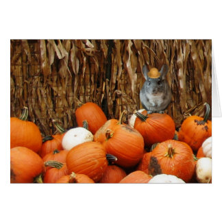 Harvest Chinchilla Greeting Cards