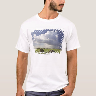 Harvest fields with storm clouds, Heidelberg T-Shirt