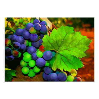 Harvest Grapes Poster