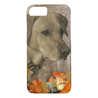 Harvest Labrador Retriever iPhone 8/7 Case