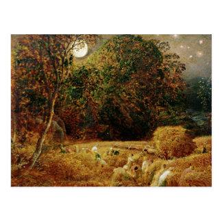 Harvest Moon Postcard