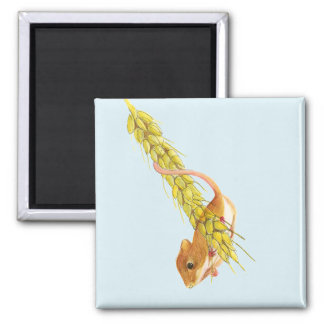 Harvest Mouse Watercolour Painting Artwork Gifts Square Magnet