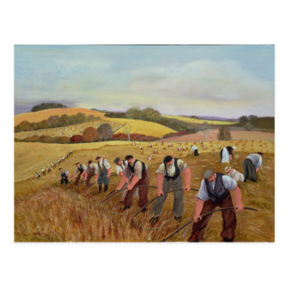 Harvest Postcard