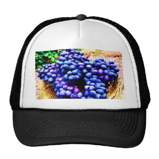 Harvest season seedless grapes fruit hat