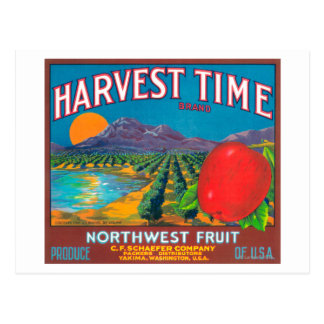 Harvest Time Apple Label - Yakima, WA Postcard