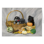 """Harvest Time"" schnauzer puppies card. Greeting Card"