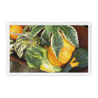 Harvest Time Thanksgiving Acrylic Tray