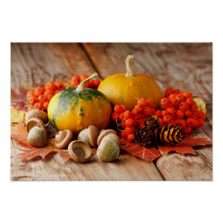 Harvested pumpkins with fall leaves poster