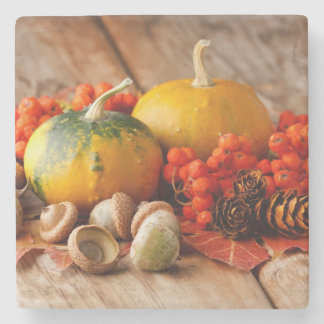 Harvested pumpkins with fall leaves stone coaster