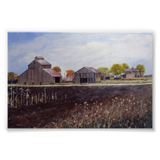 Harvested Wheat Field- poster