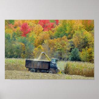 Harvesting Corn in Vermont Poster