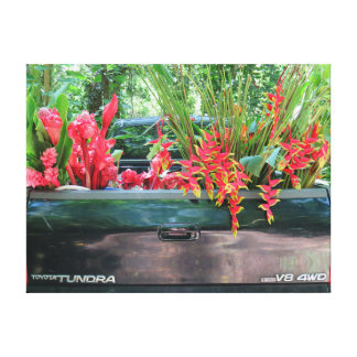 Harvesting Hawaiian Tropicals Canvas Print