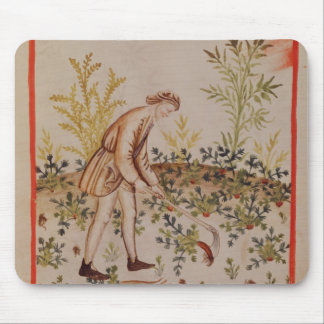 Harvesting Parsnips from 'Tacuinum Sanitatis' Mouse Mat