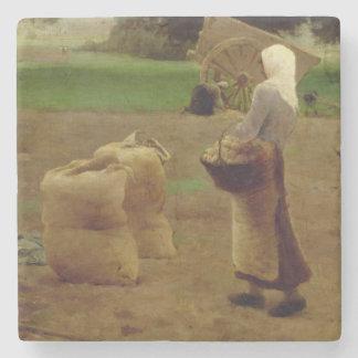 Harvesting Potatoes Stone Coaster