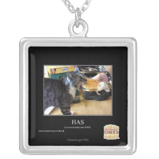 Has Silver Plated Necklace
