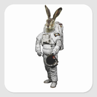 Hase Astronaut Sticker
