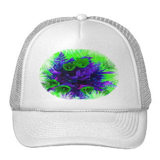 HAT- Available in 11 color combinations Cap