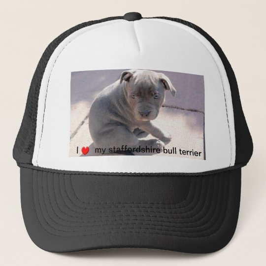 Hat for all staffordshire bull terrier lovers