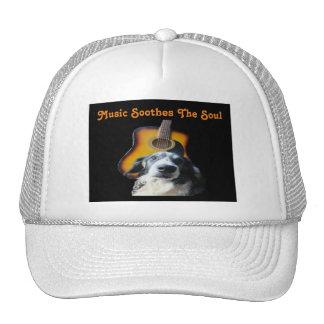 Hat Guitar Dog