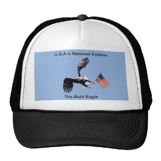 Hat/ National Emblem Cap