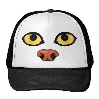 hat - pallas cat eyes