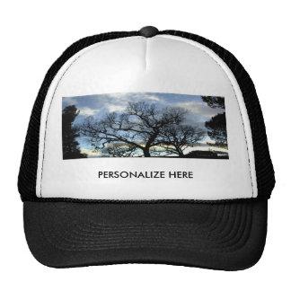 Hat: Sunset Through Trees