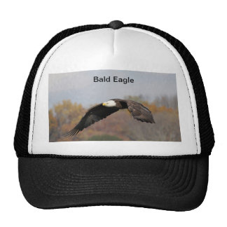 Hat with Bald Eagle in flight.