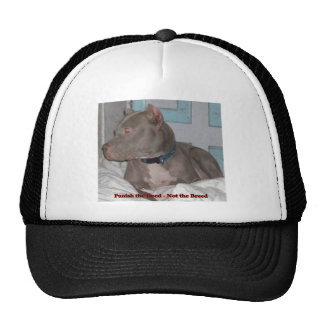 Hat With Dog Portraits
