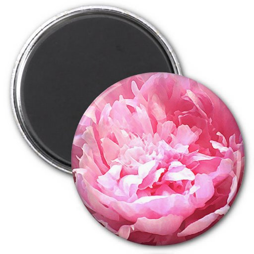 Hatched Pink Peony 6 Cm Round Magnet