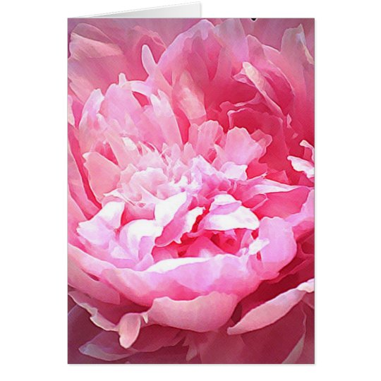 Hatched Pink Peony Greeting Card