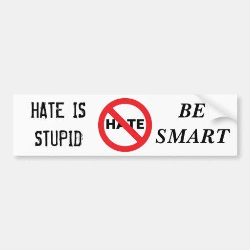 Hate is Stupid Bumper Sticker