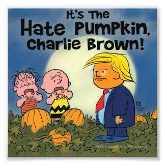 Hate Pumpkin! Photographic Print