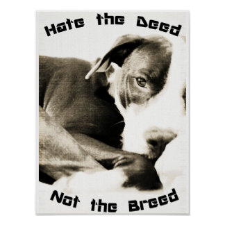 hate the breed not the deed pitbull poster print