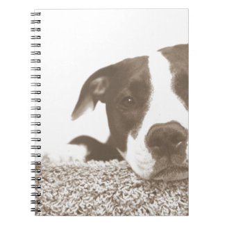 hate the deed not the breed friendly pitbull sepia spiral note book
