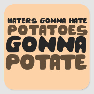 Haters gonna hate square sticker