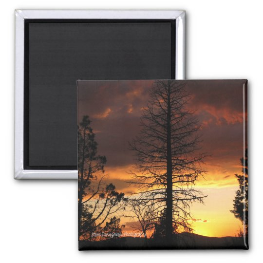 Hauntingly Beautiful Sunset Magnet