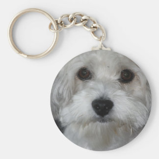 havanese-2.png key ring