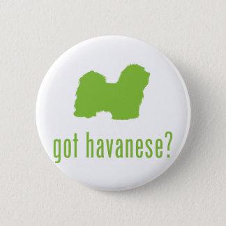 Havanese 6 Cm Round Badge