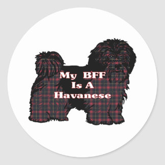 Havanese BFF Sticker