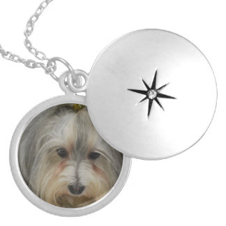 Havanese Dog Breed Round Locket Necklace
