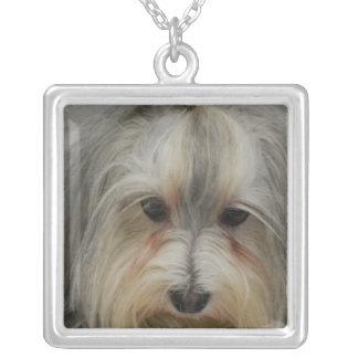 Havanese Dog Breed Square Pendant Necklace