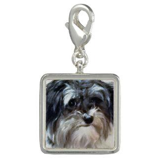 Havanese Dog Premium Charm
