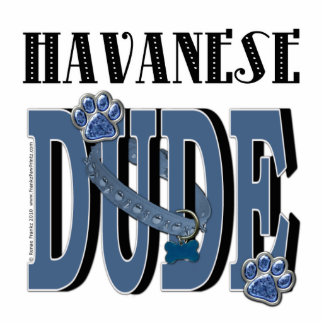 Havanese DUDE Standing Photo Sculpture