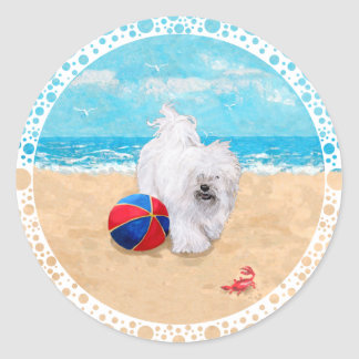 Havanese Enjoys a Day at the Beach Classic Round Sticker